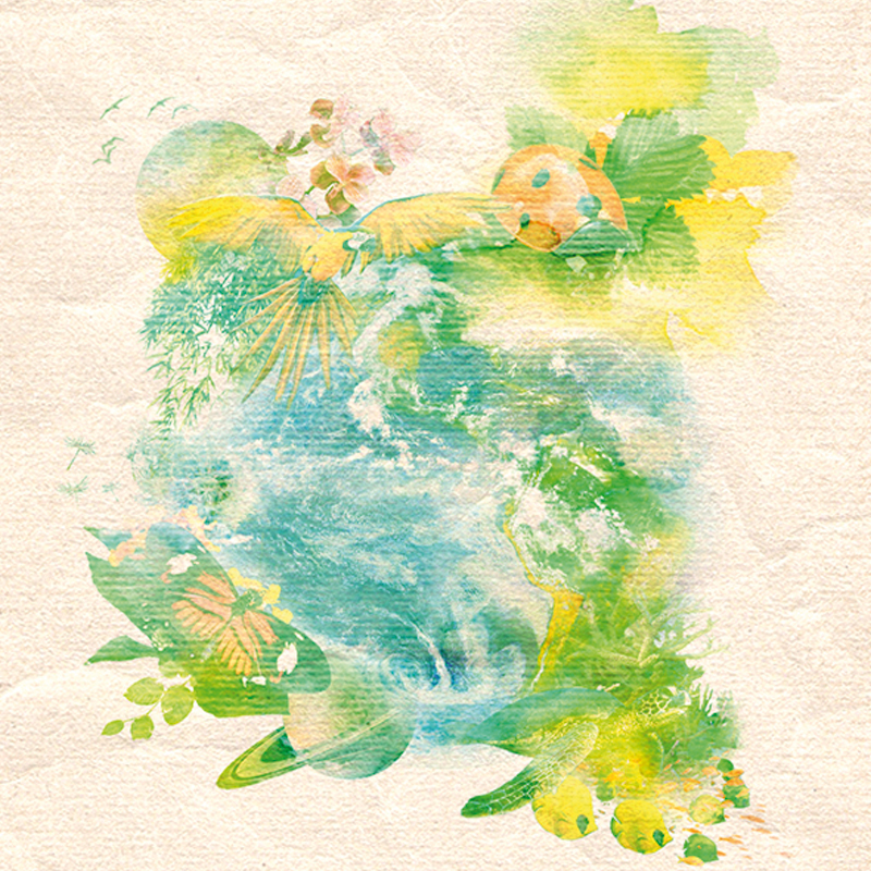 illustration aquarelle nature